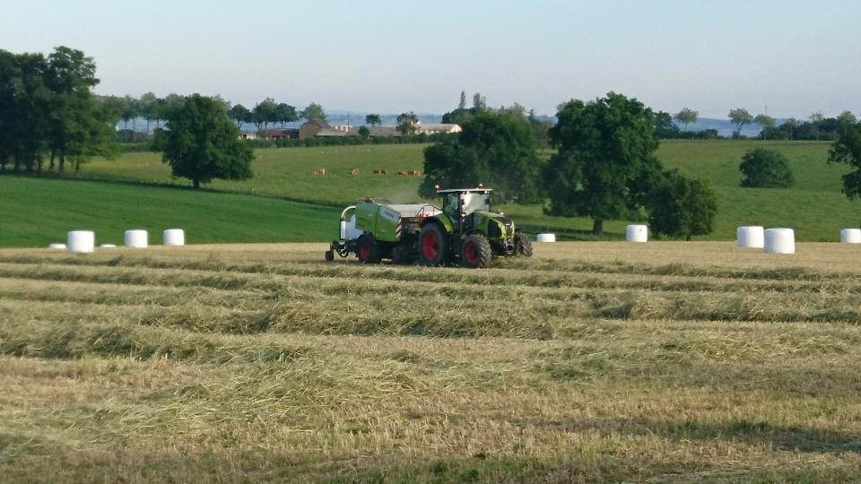 Pressage de maïs et d'herbe ensilage